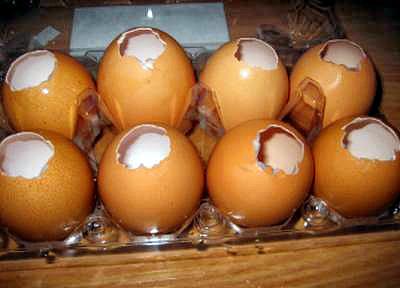 Piftie in coaja de oua